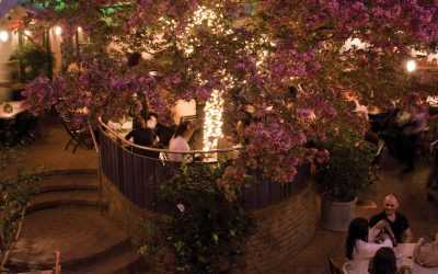 Trois bonnes raisons de profiter du Jardin Nelson