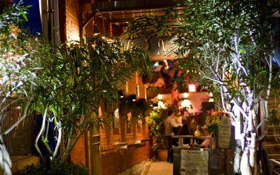 Home | Jardin Nelson